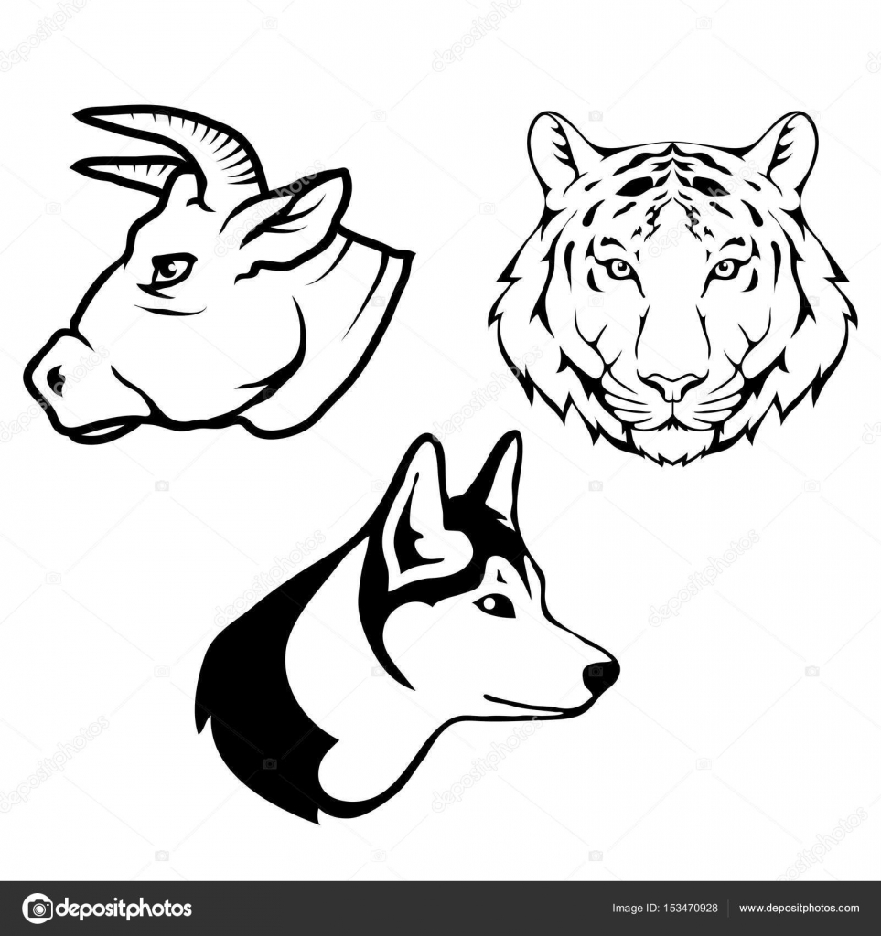 963x1024 Bull Bear And Wolf Heads Logos Stock Vector Korniakovstock