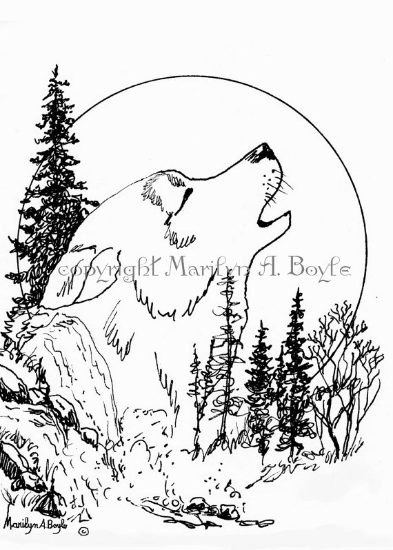 570x798 Pen And Ink Print Wolf Howling Moon Wildlife By Originalsandmore