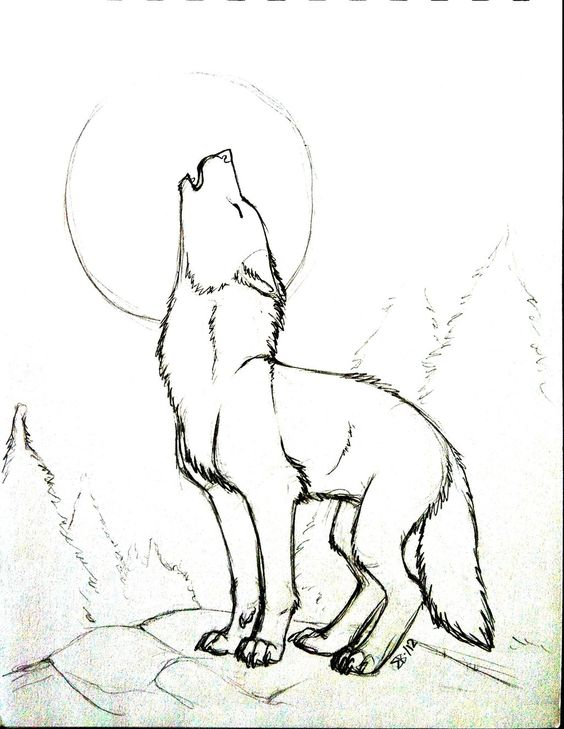 564x729 Pix For Gt Drawings Of A Wolf Howling At The Moon Amazing Art
