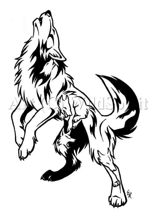 Wolf Howling Moon Drawing