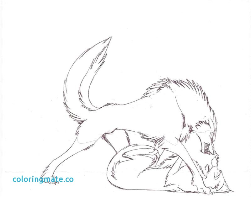 Wolf Love Drawing at GetDrawings.com   Free for personal use Wolf ...