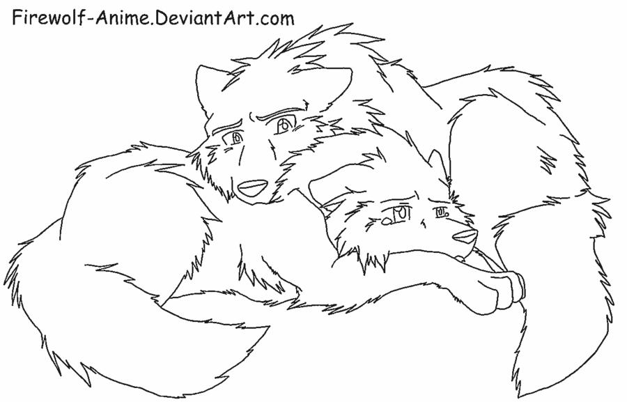 900x577 Wolf Comfort