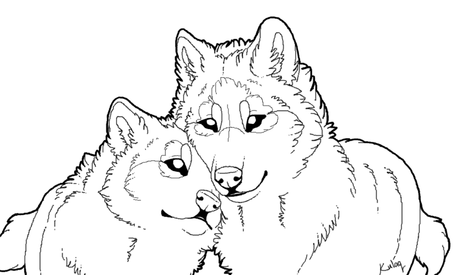 900x537 Free Wolf Lineart By Edeneue