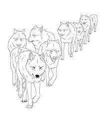 Wolf Pack Drawing