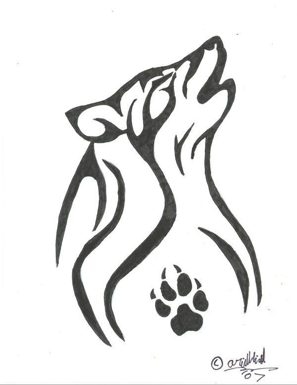Wolf Paw Drawing