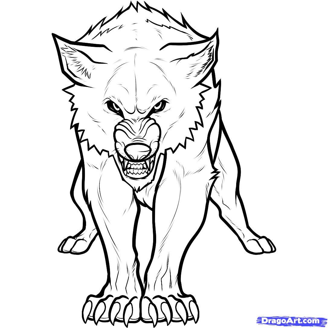 1086x1086 How To Draw A Twilight Wolf, Twilight Wolf, Wolf Jacob Step 9