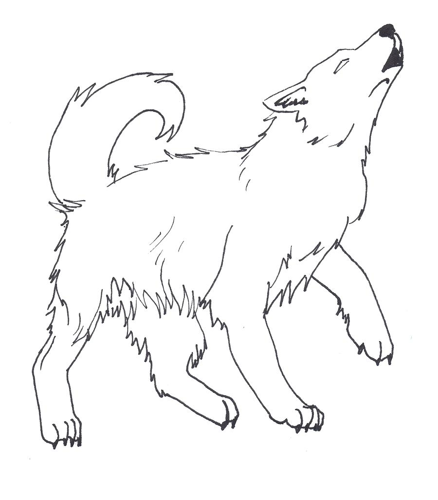 900x1027 Coloring Wolf Pup Coloring Pages Winged Puppy. Wolf Pup Coloring