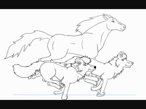 480x360 Horse And Wolf Run (Outline Test)