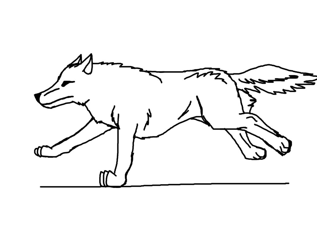 1032x774 Wolf Running Animation By Foreal100