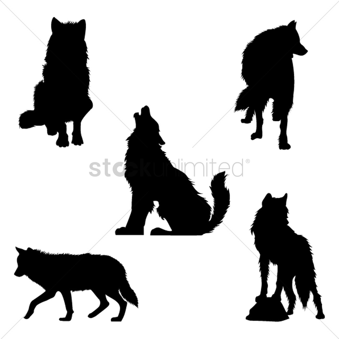 1300x1300 Set of wolf silhouettes Vector Image