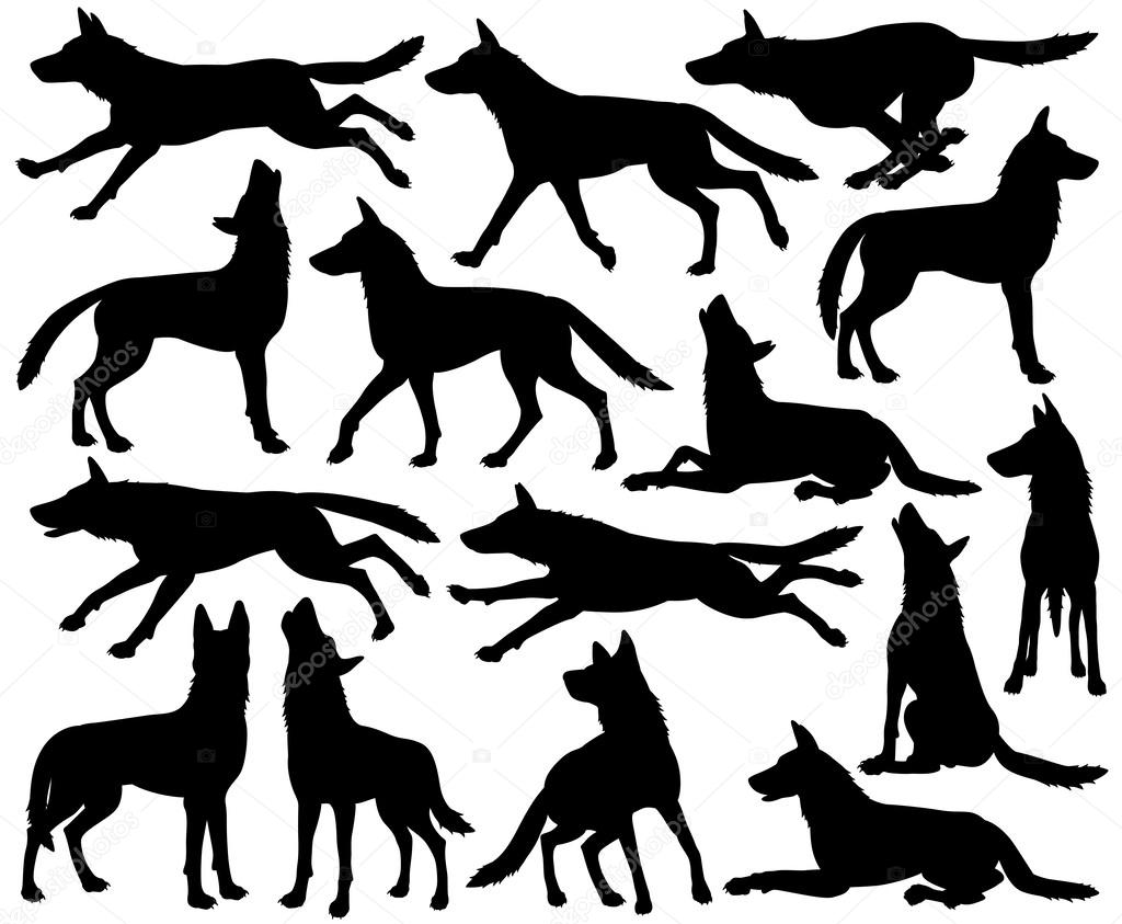 1024x843 Wolf Silhouettes Stock Vector Tawng