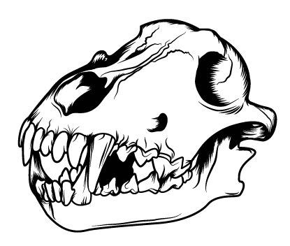 415x352 How to Create a Three Color Wolf Skull in Illustrator