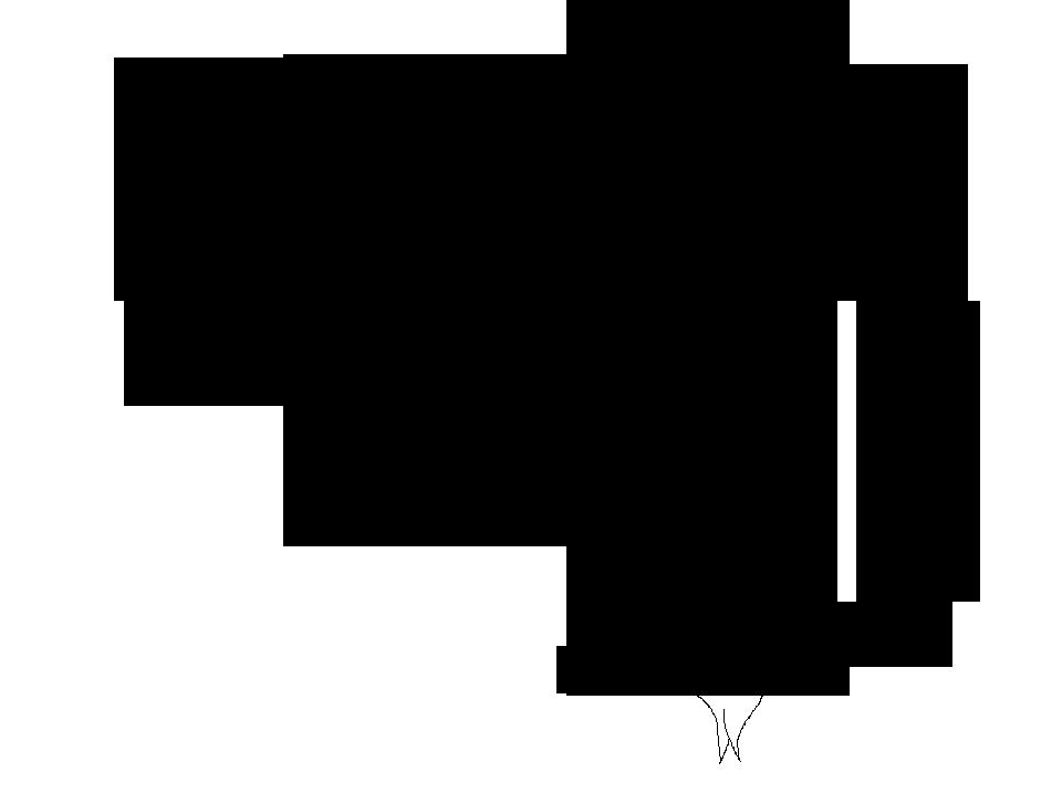 960x717 Image
