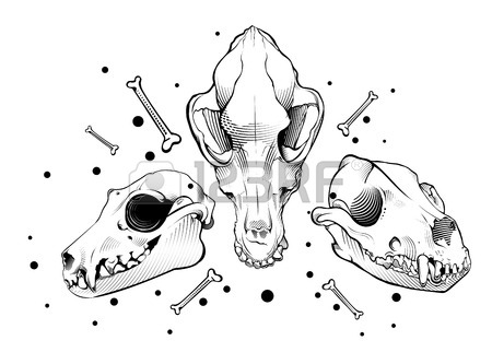 450x333 Black And White Wolf, Dog Skull Royalty Free Cliparts, Vectors