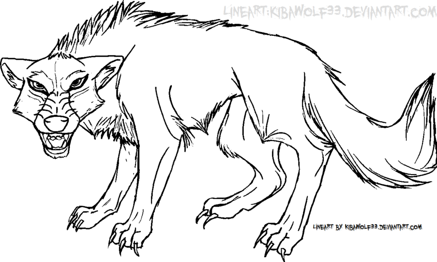 900x540 Snarling Wolf Line Art Free By Kibawolf33