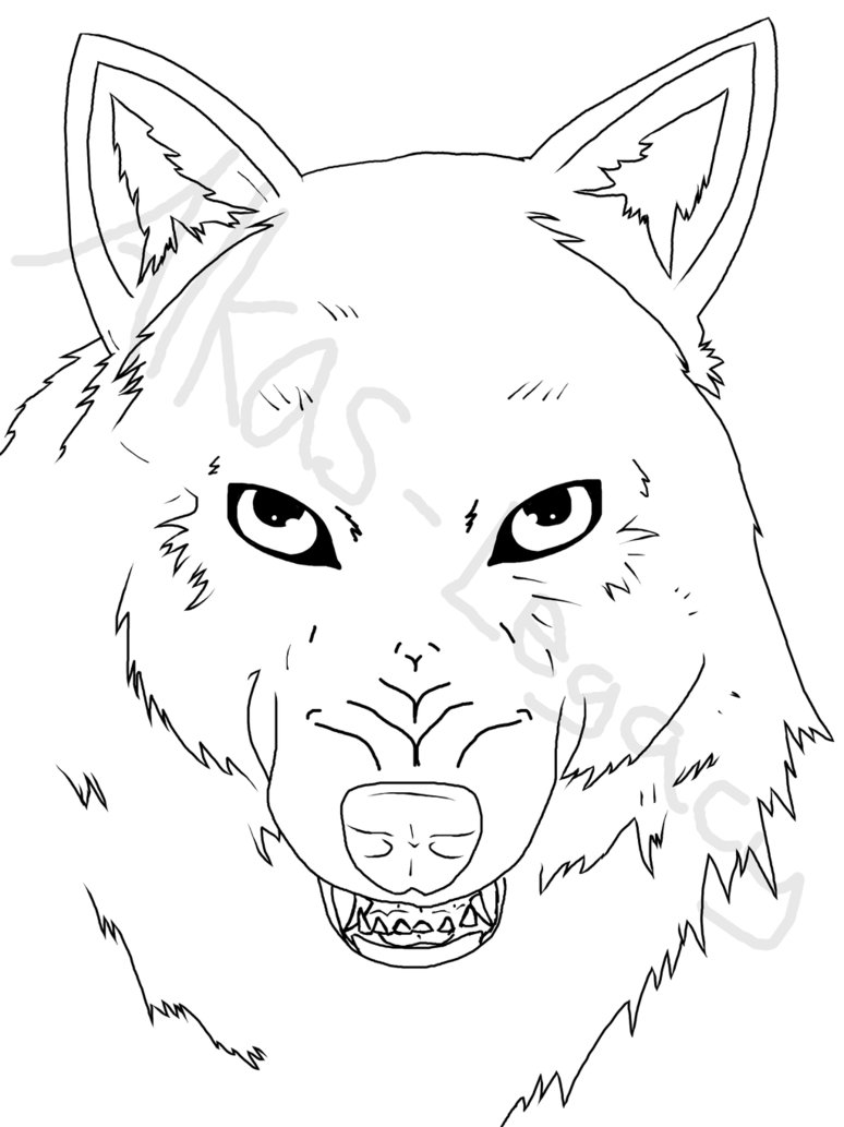 774x1033 Snarling Wolf WIP by Alkas Legacy on DeviantArt