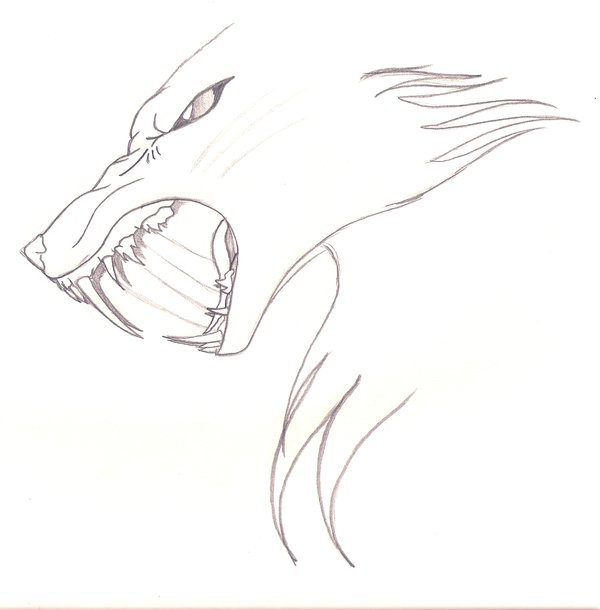 600x610 Snarling Wolf By Manar Darkwing