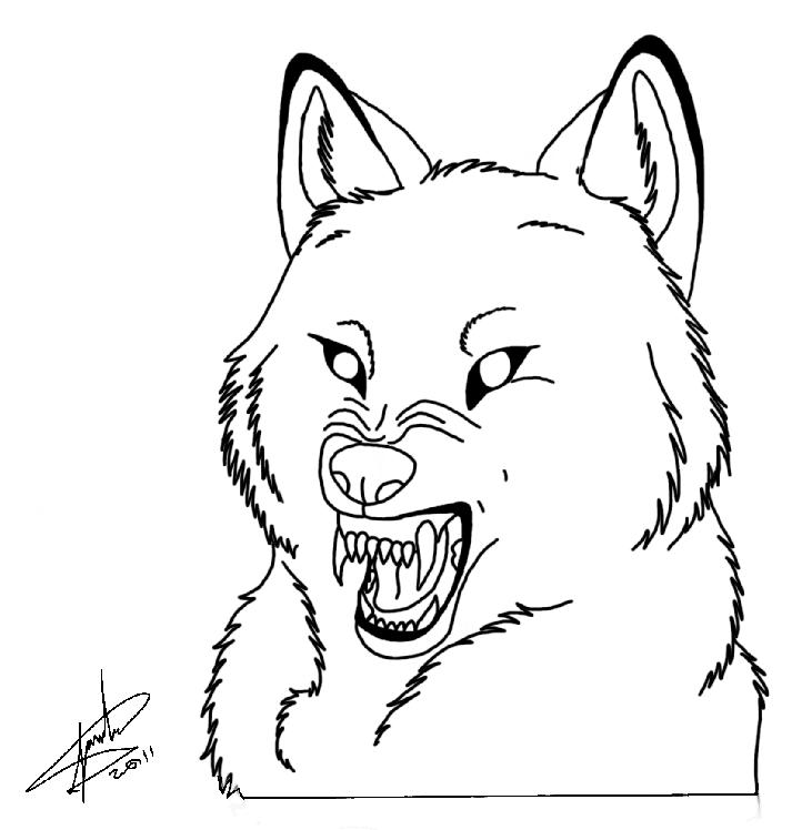 731x748 wolf snarl lineart by juanitawolf on DeviantArt