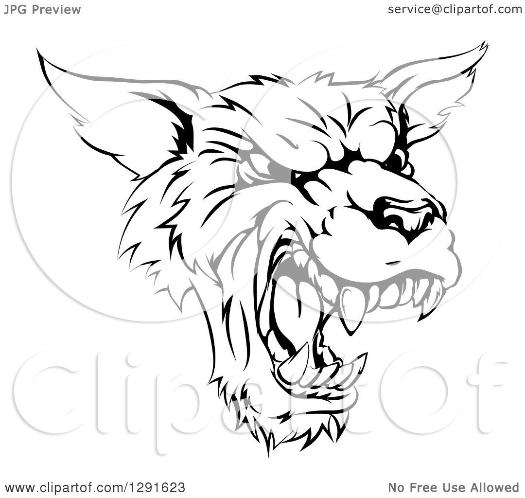 1080x1024 Clipart Of A Black And White Vicious Snarling Wolf Mascot Head