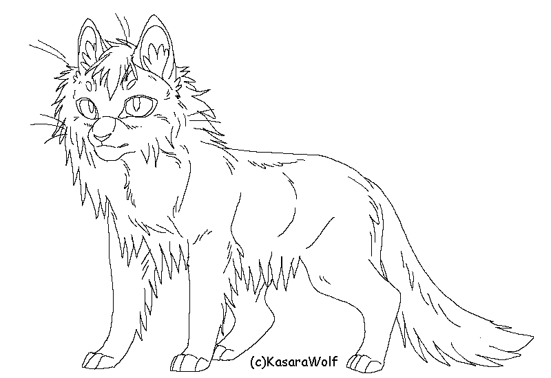 800x550 Long Hair Standing Cat Template By Kasarawolf