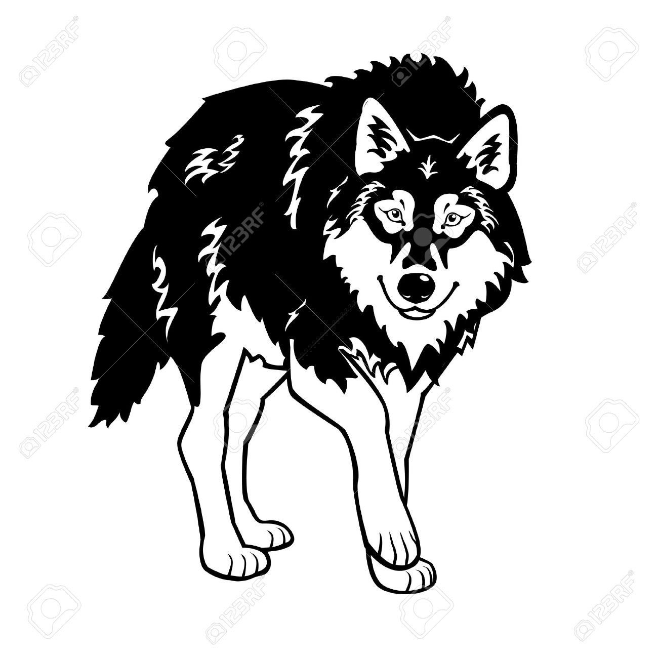1300x1300 Standing Wolf Black And White Isolated On White Background Royalty