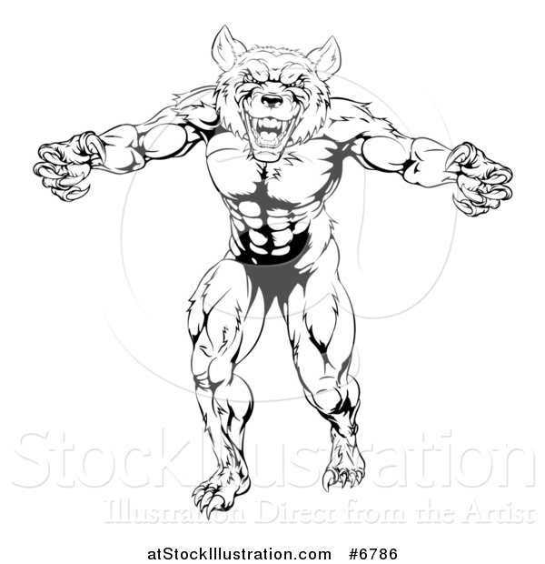 600x620 Vector Illustration Of A Black And White Muscular Wolf Man Mascot