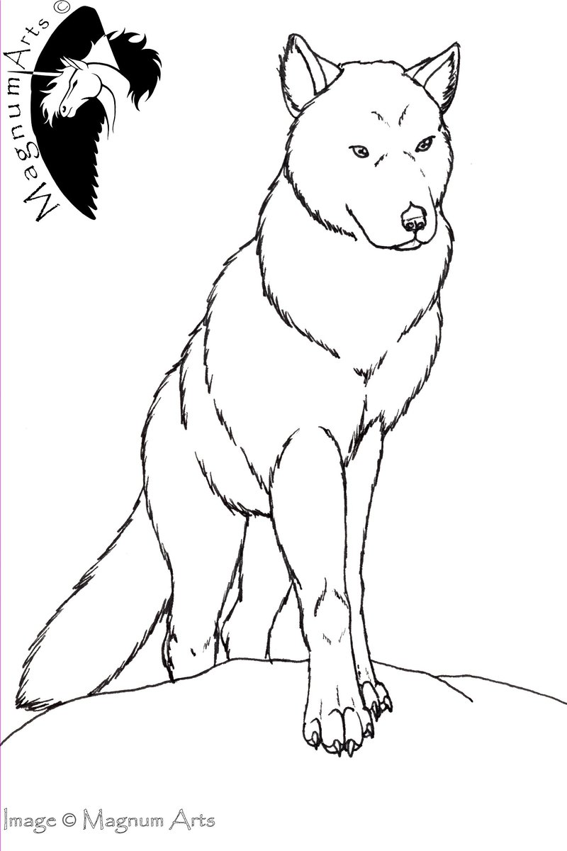 800x1200 Color Me Wolf Standing By Magnum Arts