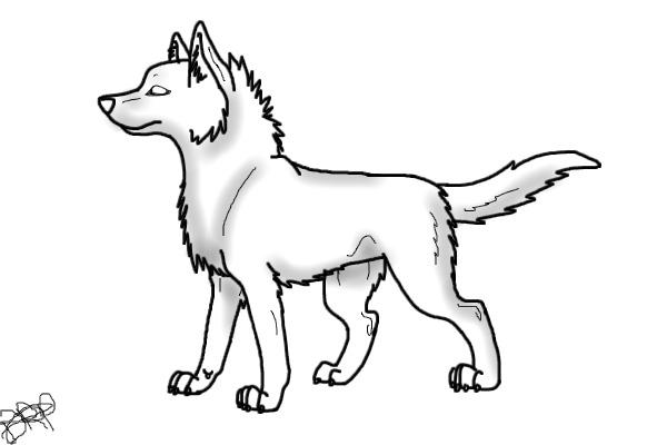 600x400 Drawn Wolf Wolf Standing
