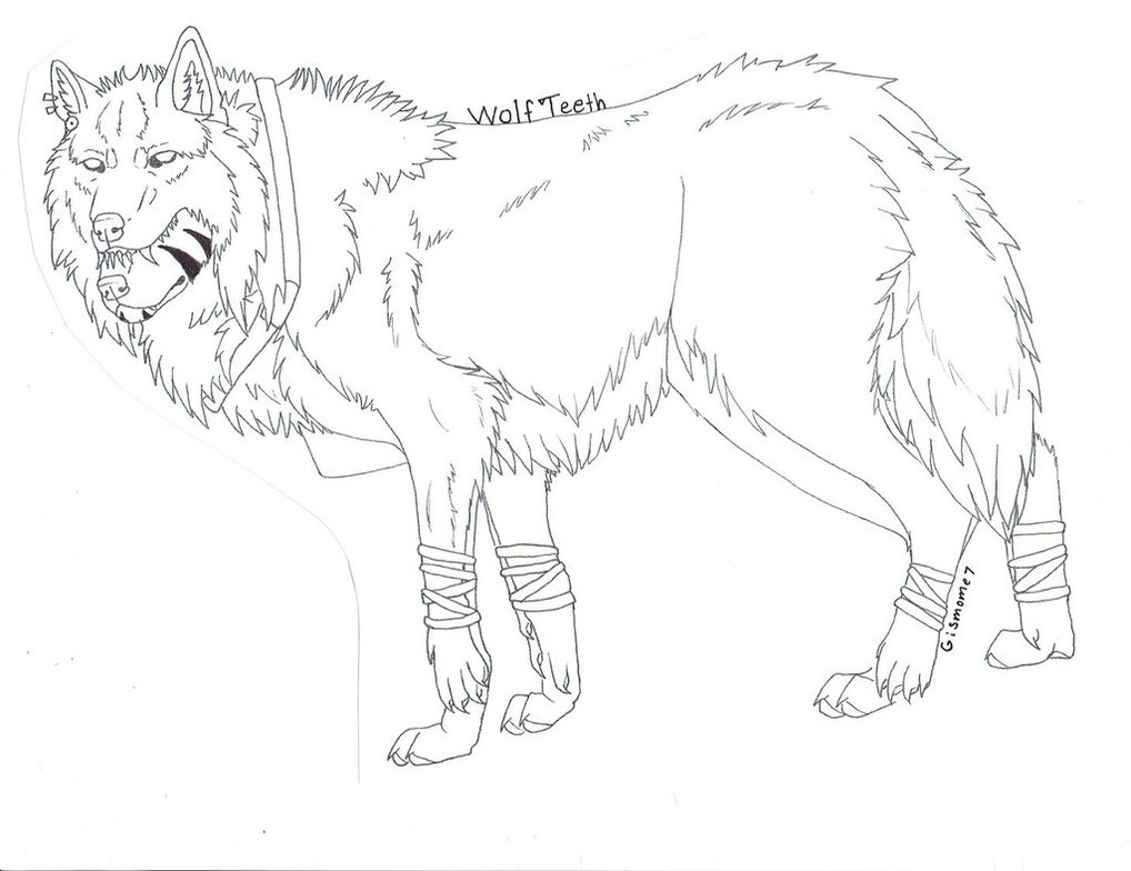 1018x784 Wolf Teeth Wolf (Not Colored) By Gismome7nightmary