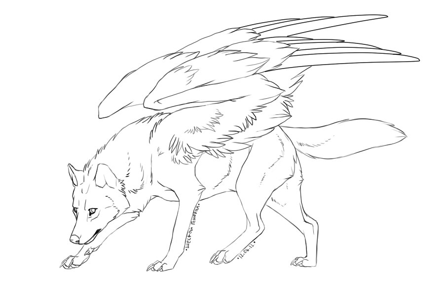 900x576 Free Winged Wolf Lineart By Doctor Necro