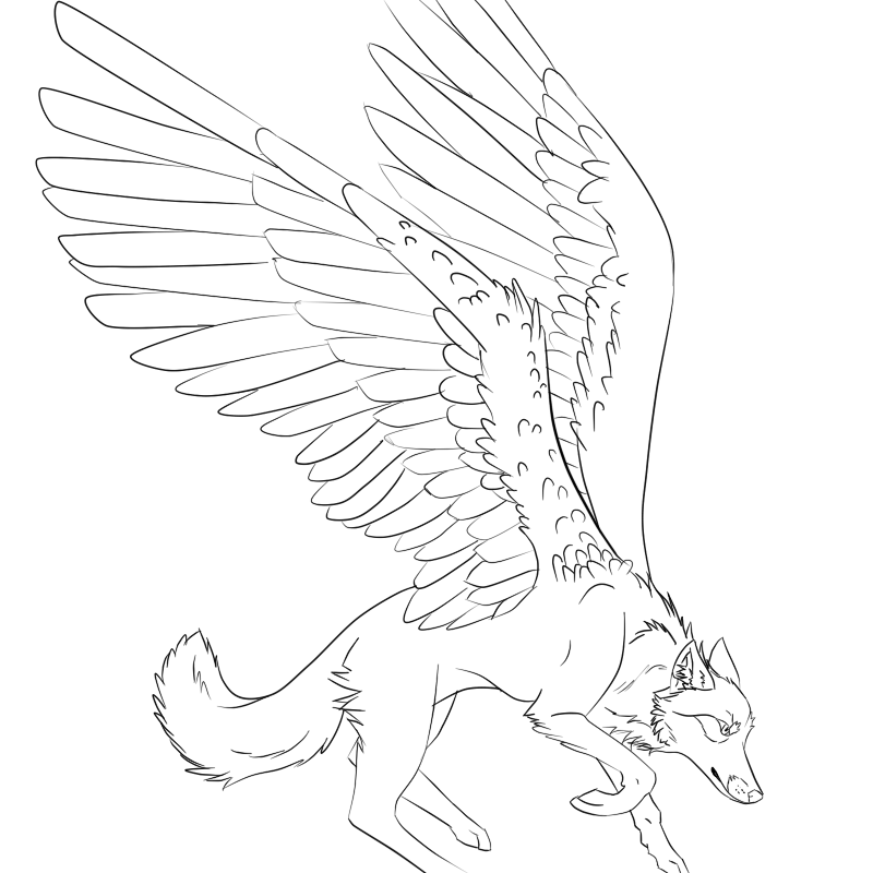 800x800 Winged Wolf Lineart By Trevu