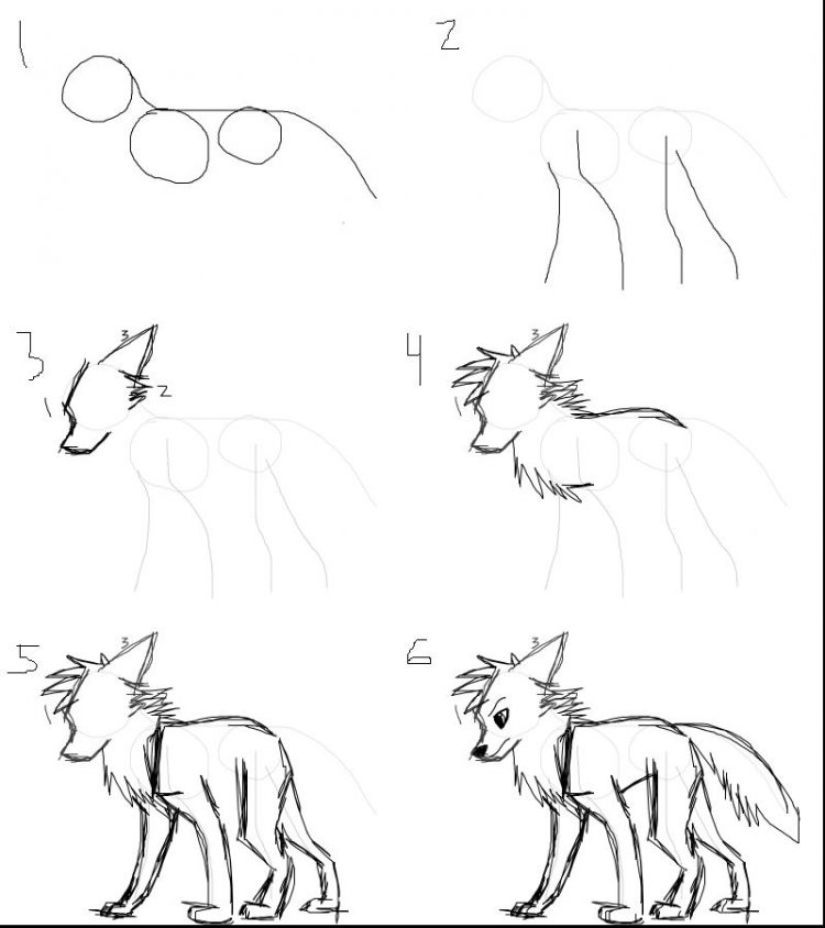 750x844 Drawing How To Draw Cartoon Wolf With Wingslso How To Draw