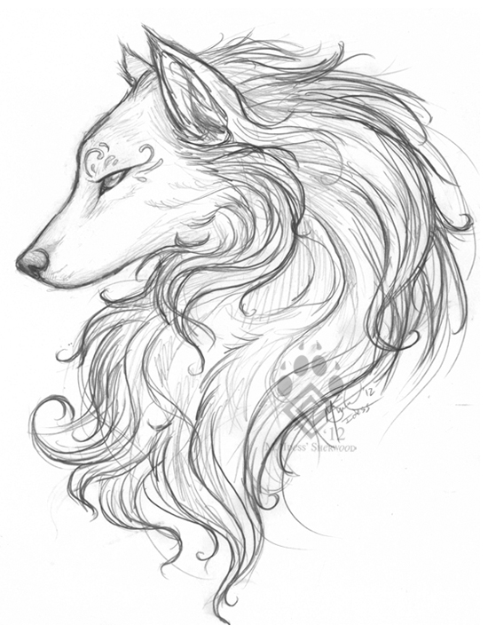 550x713 White Wolf Sketch By Idess