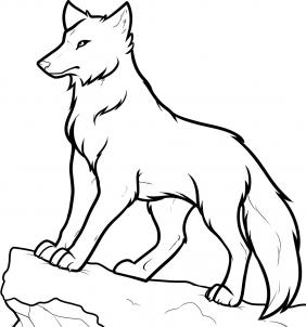 282x302 Wolf Drawing Easy