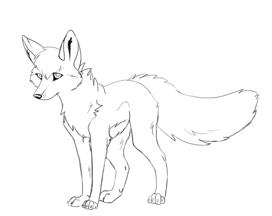 Wolfs Drawing at GetDrawings com | Free for personal use