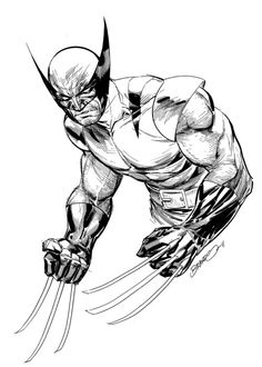 236x330 Wolverine By Brandon Peterson