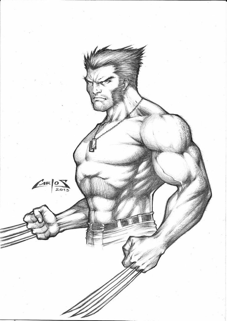 736x1040 434 Best Wolverine Images On Wolverines, Comics