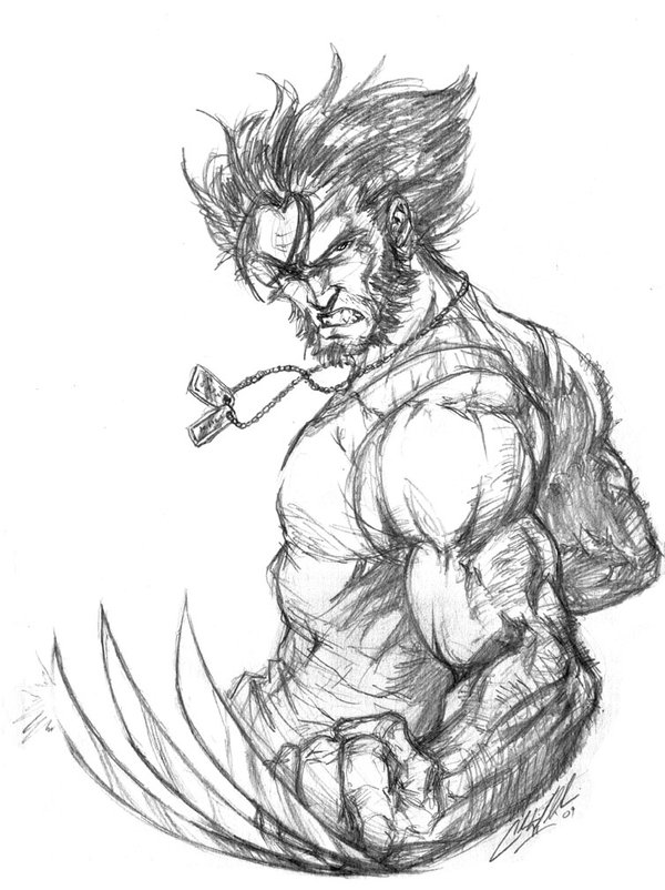 600x802 Wolverine Sketch By Cdubbart
