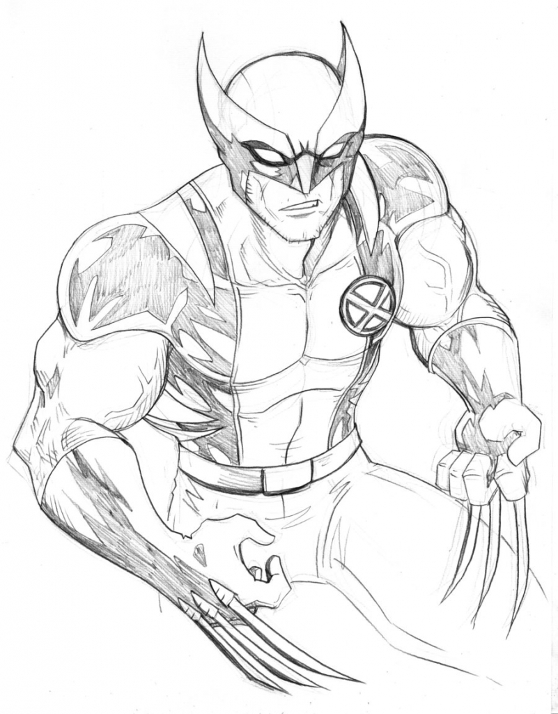 801x1024 Drawings Of Wolverine Wolverine Art Drawing Images