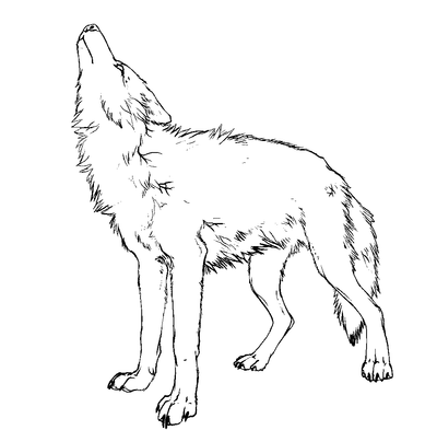 400x393 Ms Paint Wolf Howling!