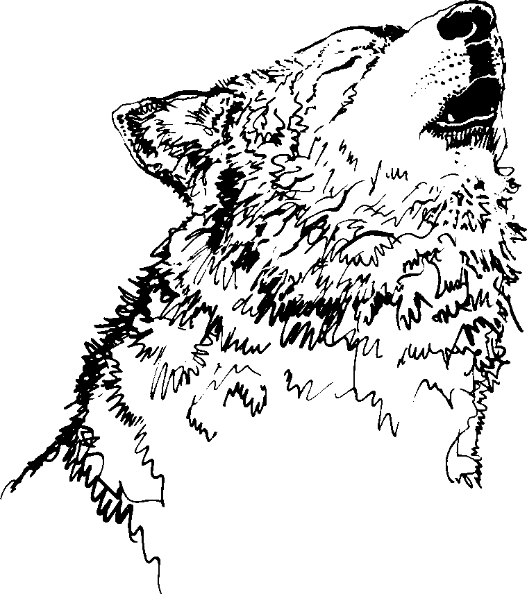 759x856 Wolf Howling Clipart Black And White