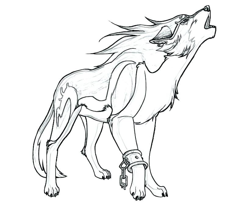 800x667 Coloring Pages Of Wolves Or Wolf Howling At The Moon Coloring