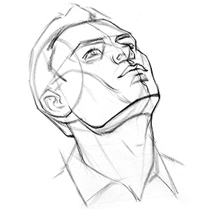 300x300 How To Draw The Head From Extreme Angles Proko