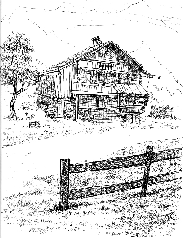 618x804 Little Bear Cabin, Montana Donar's Sketchbook