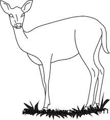 215x234 Image Result For Deer Line Drawing Doe Wood Burning Ideas