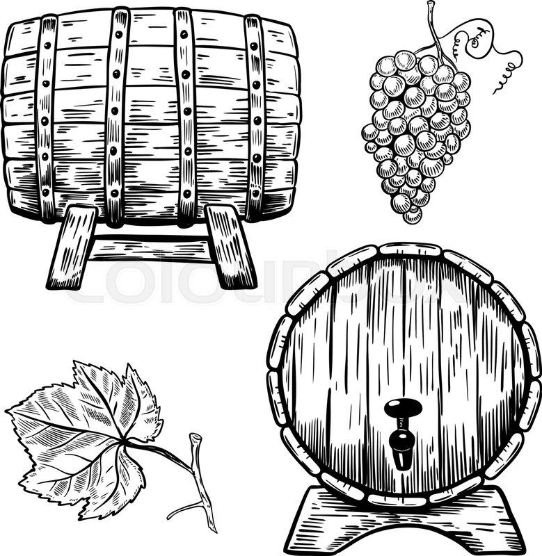 779x800 Set Of Wooden Wine Barrels. Grape, Grape Leaf. Design Elements