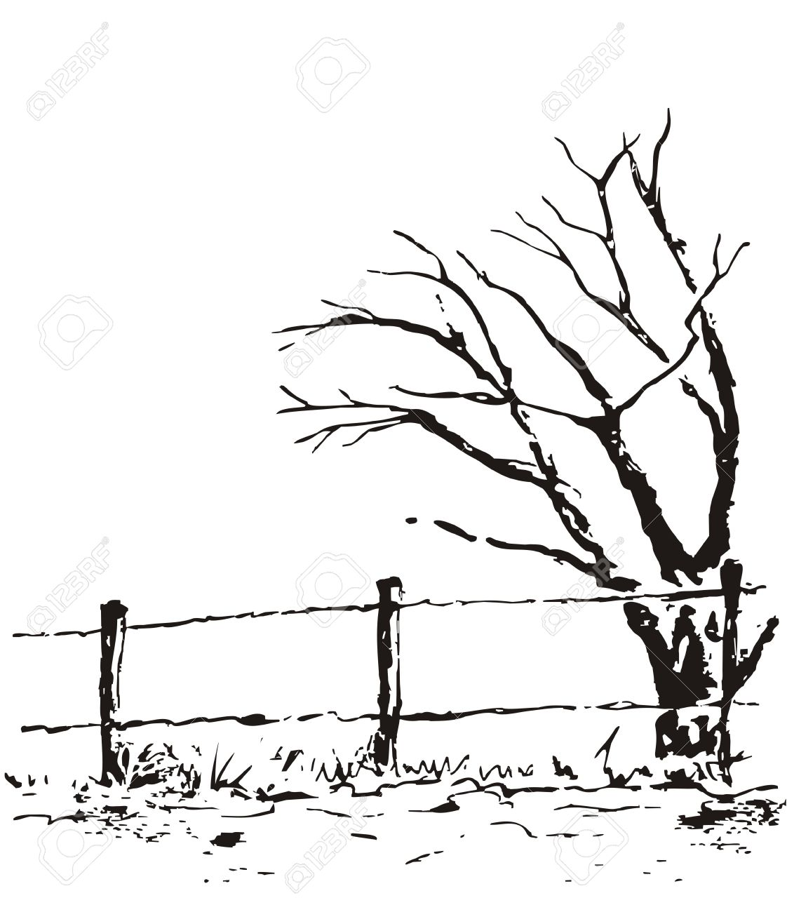 1122x1300 Lonely Tree With Fence. Vector Nature Illustration Isolated