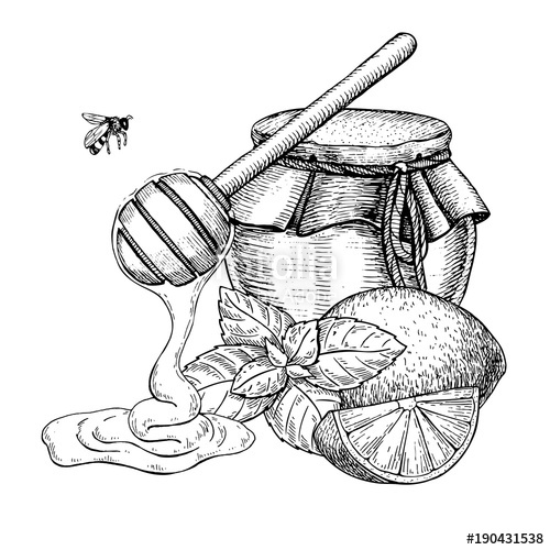 500x500 Honey With Lemon And Mint Vector Drawing. Jar, Wooden Spoon, Hon