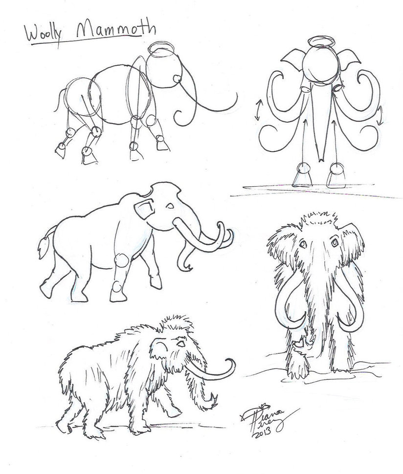 824x970 Draw A Woolly Mammoth By Diana Huang