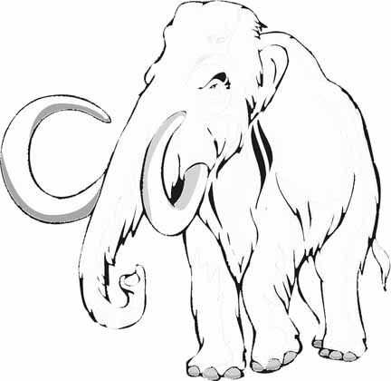 Wooly Mammoth Drawing